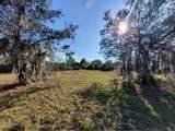 37761 Washington Loop Road - Photo 4