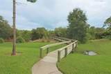 10521 Amberjack Way - Photo 31