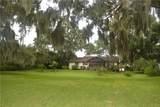 1421 Osceola Avenue - Photo 5
