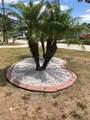 4390 Mundella Circle - Photo 65