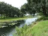 10790 Poinciana Drive - Photo 16