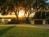 1700 Buena Vista Drive - Photo 2