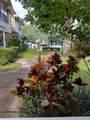 5980 Scotchwood Glen - Photo 34