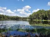 1101 Lake Charles Circle - Photo 5