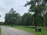 LOT 19 Savannah Oaks Drive - Photo 3