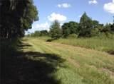 2223 Mcbride Road - Photo 16