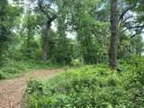 01 County Road 315 - Photo 10
