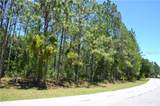 10875 Alico Pass - Photo 11