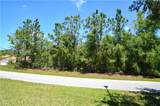 10875 Alico Pass - Photo 12