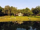 1630 Lake Nettie Court - Photo 54