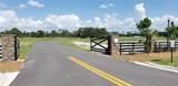 3442 Lake Diane Road - Photo 14