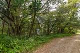 9329-9317 Winter Garden Vineland Road - Photo 6