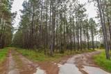 9329-9317 Winter Garden Vineland Road - Photo 9
