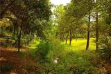 31852 Wekiva River Road - Photo 50