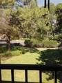 2691 Sabal Springs Circle - Photo 17