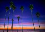 3800 Gulf Boulevard - Photo 64