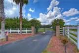 17102 Boy Scout Road - Photo 37