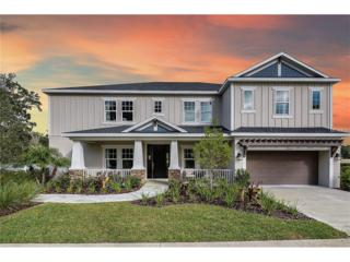 2026 Abor Mist Drive, Brandon, FL 33510 (MLS #A4139975) :: The Duncan Duo & Associates