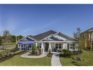 27177 Cooper Creek Court, Wesley Chapel, FL 33544 (MLS #A4146665) :: The Duncan Duo & Associates