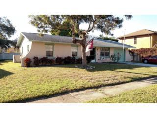 3934 Mesa Avenue, Sarasota, FL 34233 (MLS #A4177820) :: Medway Realty