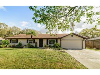 617 Albritton Avenue, Sarasota, FL 34232 (MLS #A4178647) :: Medway Realty