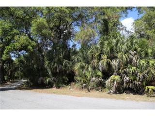 Vaughn Lane, North Port, FL 34288 (MLS #A4181636) :: Medway Realty