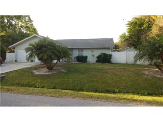 630 Argus Road, Venice, FL 34293 (MLS #A4181717) :: Medway Realty