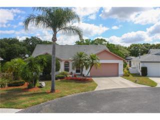 4831 Hamlets Grove Drive, Sarasota, FL 34235 (MLS #A4184755) :: The Duncan Duo & Associates