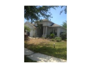 12445 Adventure Drive, Riverview, FL 33579 (MLS #A4185946) :: The Duncan Duo & Associates