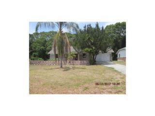 4407 Old Bradenton Road, Sarasota, FL 34234 (MLS #A4186896) :: Alicia Spears Realty