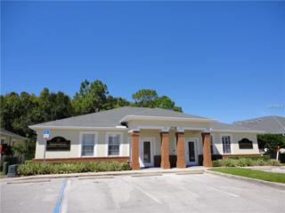 2718 Windguard Circle #101, Wesley Chapel, FL 33544 (MLS #E2204466) :: The Duncan Duo & Associates