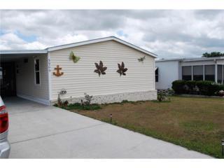 3906 Julie Drive, Wesley Chapel, FL 33543 (MLS #E2204569) :: The Duncan Duo & Associates