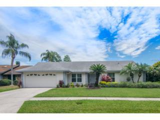 14921 Lake Forest Drive, Lutz, FL 33559 (MLS #E2204573) :: The Duncan Duo & Associates