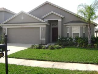 3207 Sunwatch Drive, Wesley Chapel, FL 33544 (MLS #H2202931) :: The Duncan Duo & Associates