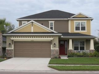 27102 Evergreen Chase Drive, Wesley Chapel, FL 33544 (MLS #H2203222) :: The Duncan Duo & Associates