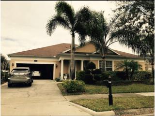 4831 Indian Deer Road, Windermere, FL 34786 (MLS #O5497752) :: Alicia Spears Realty