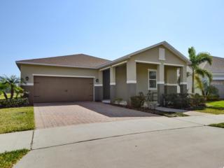 6834 Merrick Landing Boulevard, Windermere, FL 34786 (MLS #O5499409) :: Alicia Spears Realty