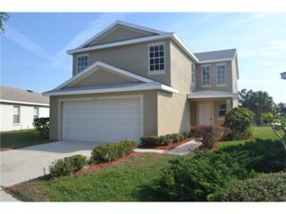 11622 Hammocks Glade Drive, Riverview, FL 33569 (MLS #O5506073) :: The Duncan Duo & Associates
