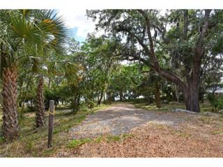 Old Highway 50, Clermont, FL 34711 (MLS #O5507061) :: The Duncan Duo & Associates