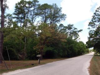 9124 Fryland Road, Orlando, FL 32817 (MLS #O5511611) :: The Duncan Duo & Associates
