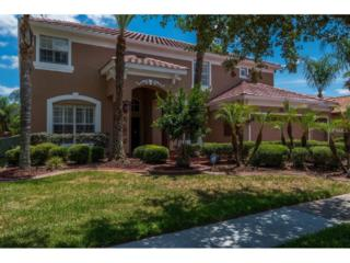 11732 Delwick Drive, Windermere, FL 34786 (MLS #O5512469) :: Alicia Spears Realty