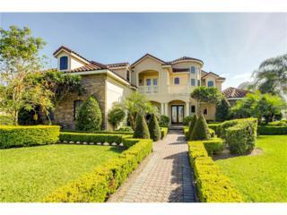 11634 Vinci Drive, Windermere, FL 34786 (MLS #O5512567) :: Alicia Spears Realty