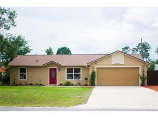 2404 Courtland Boulevard, Deltona, FL 32738 (MLS #O5513030) :: The Duncan Duo & Associates