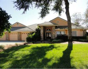 5446 Blue Heron Lane, Wesley Chapel, FL 33543 (MLS #T2445463) :: The Duncan Duo & Associates