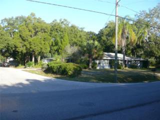 6229 S Bayshore Boulevard, Tampa, FL 33611 (MLS #T2729239) :: The Duncan Duo & Associates