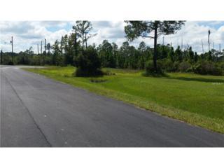 8105 Spring Forest Lane, Wesley Chapel, FL 33544 (MLS #T2786644) :: The Duncan Duo & Associates