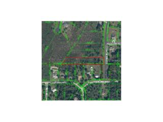8001 Woodleaf Boulevard, Wesley Chapel, FL 33544 (MLS #T2811440) :: The Duncan Duo & Associates