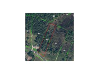 8547 Spring Forest Lane, Wesley Chapel, FL 33544 (MLS #T2811653) :: The Duncan Duo & Associates