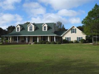 8219 Valrie Lane, Riverview, FL 33569 (MLS #T2821863) :: The Duncan Duo & Associates
