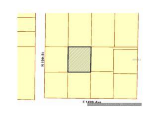 14912 N 20TH Street, Lutz, FL 33549 (MLS #T2823885) :: The Duncan Duo & Associates